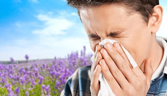 Heuschnupfen Pollenflug